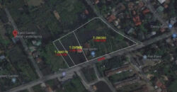 10,000 SQM Agricultural Lot in Calumpit, Bulacan