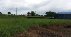 2,416 SQM Residential Lot in Cabanatuan
