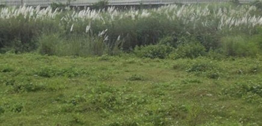 315 SQM Lot in Orchard Golf and Country Club, Dasmarinas, Cavite