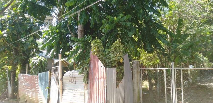 1134 sqm Lot in Boracay
