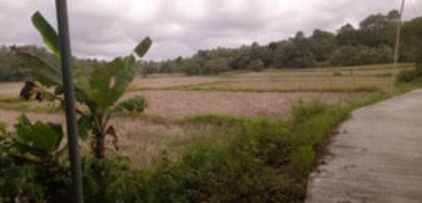6,500 Agricultural Land in Aklan
