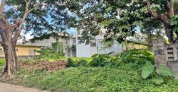 For Sale 270 sqm Residential lot in Brooklyn Hills Subdivision Cainta