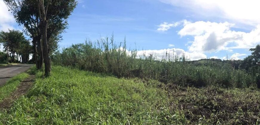 Vacant lot in Eastland Heights in Antipolo City