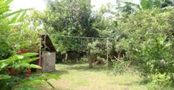 FOR SALE: LAND WITH HOT SPRING IN TIAONG QUEZON