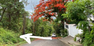 Vacant lot in Palos Verdes, Antipolo 631 sqm